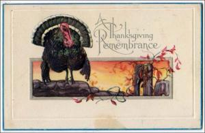 Thanksgiving Remembrance, Turkey