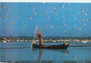 Romania The Danube Delta boatman Postcard