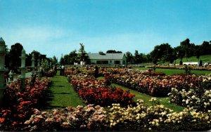 New York Newark Jackson & Perkins Rose Garden General View