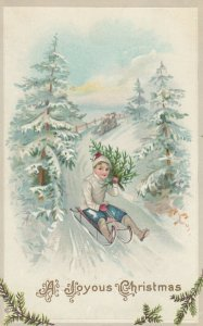 Boy on Sled holding a CHRISTMAS tree , 00-10s