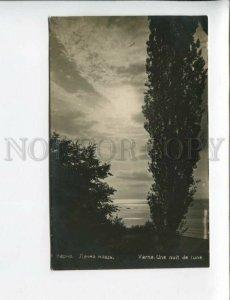 3173250 BULGARIA VARNA moonlit night Vintage photo postcard