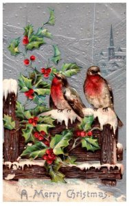 Christmas , Birds in winter