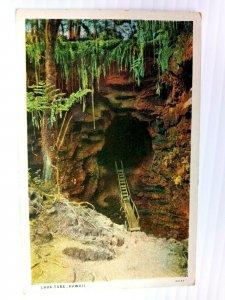 Vintage Postcard 1920's Lava Tube Scene Hawaii