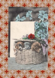 Puppies In A Basket With Leaves & Flowers, Postcard, Antique/Vintage, Dogs, Pets