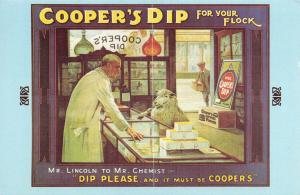 Nostalgia Postcard COOPERS DIP for your Flock 1900s Advertising Repro Card NS1