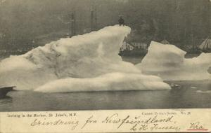 canada, St. JOHN'S, Newfoundland, Iceberg in the Harbor (1905) Postcard