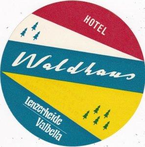 Switzerland Valbella Lenzerheide Hotel Waldhaus Vintage Luggage Label sk4142