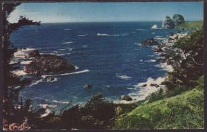 Shores of the Pacific,CA Postcard BIN