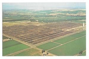 Greeley CO Monfort Gilcrest Cattle Feedlot Aerial View Lew Dakan Vtg Postcard