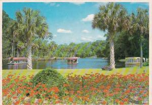 Florida Silver Springs Glass Bottom Boats