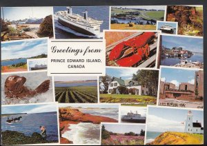 Canada Postcard - Greetings From Prince Edward Island   B2508