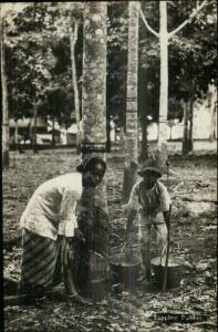 Ethnic Labor Woman & Child Tapping Rubber Trees Malaysia or Singapore RPPC
