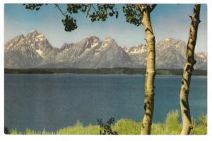 Lake Jackson Grand Teton National Park Vintage Postcard