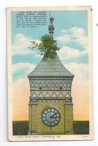 Court House Tower Tree Greensburg IN 1939 Curteich Postcard