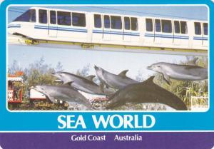 SEA WORLD , Gold Coast , Australia , 70-80s ; Mono-rail train & Dolphins