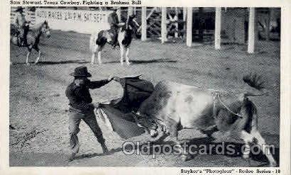 Sam Stewart Western Postcard Postcards  Sam Stewart