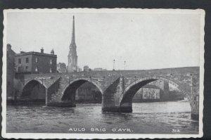 Scotland Postcard - Auld Brig O'Ayr     RS6844