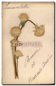 Old Postcard Fantasy Flowers Embroidery dried