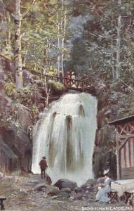 SWITZERLAND, 1900-1910s; Der Amselfall, TUCK #659