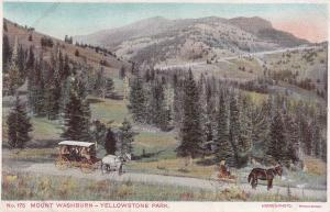 Mount Washburn Yellowstone National Park Haynes Photo Postcard