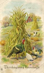 Greetings -  Thanksgiving
