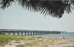 Fishing Pier , VENICE , Florida , 1950-60s