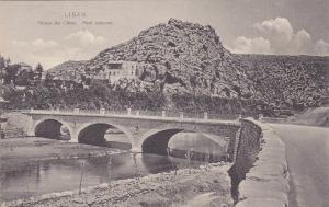 LIBAN / Lebanon , Fleuve du Chien, Pont nouveau , 00-10s