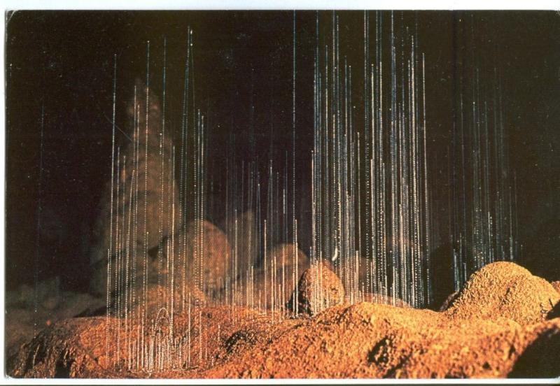 Glow-worm Threads, Waitomo Caves New Zealand unused Postcard