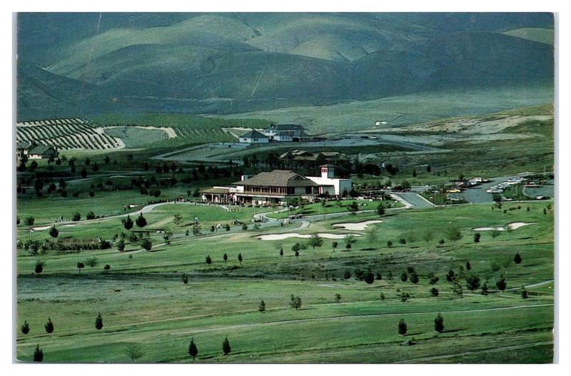 Scene on Kern River Bakersfield, CA Postcard