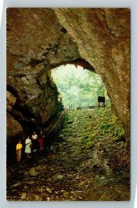 Mammoth Cave National Park KY-Kentucky, Cave Entrance, Chrome Postcard