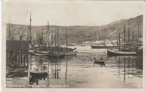 RP: Harbour , HAMMERFEST , Norway , 00-10s #2
