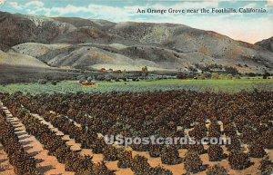 Orange Grove - Foothills, CA