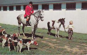 Ready For The Hunt - Dogs, Horse, Pony