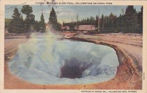 Wyoming Yellowstone National Park Morning Glory Pool 1949