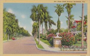 Florida Bradenton Typical Palm Lined Avenue Curteich
