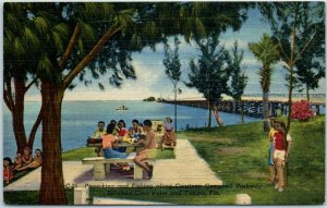 Clearwater / Tampa Florida Postcard Picnicking Courtney Campbell Parkway Linen