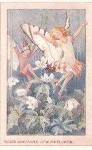 Wood Anemone Fairy , 1940-50s ; Artist Margaret W. Tarrant