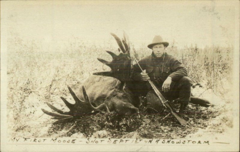 Moose Hunting Hunter Gun Dead Moose Alaska? Real Photo Postcard