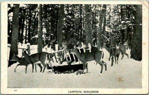 LAMPSON, Wisconsin Greetings Postcard Deer / Winter Scene Herman the Printer