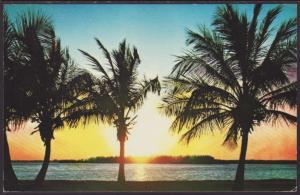 Sunrise,Florida Postcard BIN