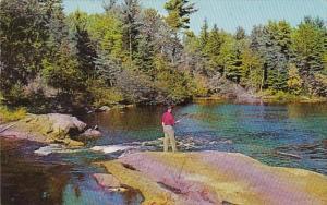Canada Ontario Muskoka Huntsville Greetings From Cedar Grove Lodge Peninsula ...