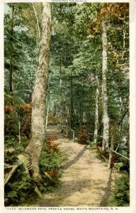 NH - Franconia Notch. Wildwood Path at Profile House