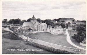 Penmon Priory, near Beaumaris, Anglesey, Wales, United Kingdom, PU-1956