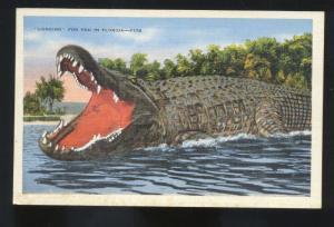 LOOKING FOR YOU IN FLORIDA HUGE ALLIGATOR CROCODILE VINTAGE POSTCARD