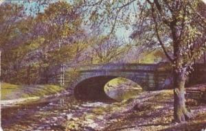 Kentucky Louisville Rustic Bridge Autumn Colors In Cherokee Park 1950