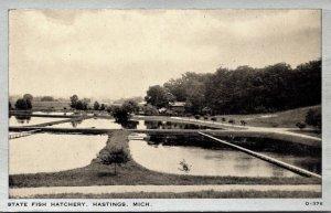 Michigan Hastings State Fish Hatchery