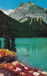 Canada Michael Peak and Emerald Lake Field British Columbia