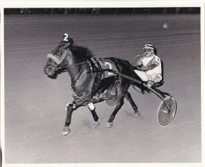 LIBERTY BELL PARK, Harness Horse Race, BEAUSART'S BEST wins, 1983