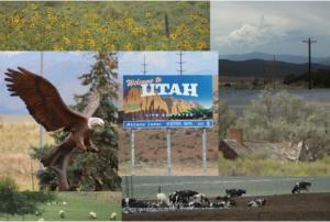 State Souvenir Postcard Set of 6, Road Trip Through Utah Farmland on Highway 15