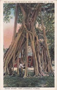 Florida Fort Lauderdale The Million Dollar Banyan Tree